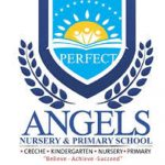 Angelic Prince and Princess Nursery and Primary School Job Recruitment Form